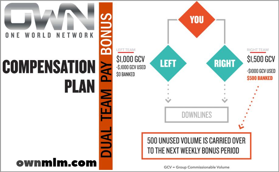 Onw World Network Company - Dual Team Bonus