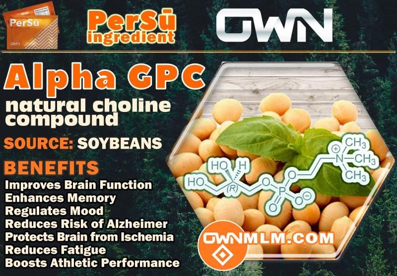 Alpha GPC (PerSu ingredient)