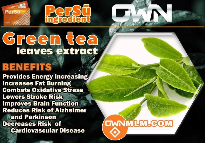 PerSu Composition (Green Tea)